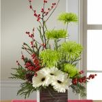 Reference # B13-5136 Starting at  $49.99 White gerbera daisies capture their attention at the base of this flower arrangement, with stems of green spider chrysanthemums, and red ilex berry stems extending upwards for a unique yuletide look. Accented with an assortment of Christmas greens and present