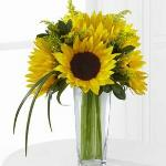 Reference # D9-4910 Starting at $ 44.99 The FTD® Sunshine Daydream™ Bouquet highlights stunning sunflowers to capture their every attention with its bright beauty. Gorgeous sunflowers are accented with solidago, lily grass blades and lush greens .