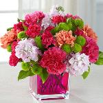 Reference # C8-5164 Starting at $ 43.99 Orange roses, hot pink carnations, orange carnations, pale pink gilly flower, hot pink mini carnations, green button poms, and lush greens are beautifully arranged in a raspberry pink glass cubed vase.