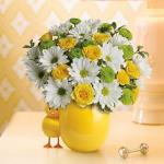 Reference #  T33-1B Starting at $42.99  This adorable bouquet will brighten any room with its beautiful blooms. Moms love the ceramic chick.  White daisies, yellow roses and green button spray chrysanthemums..